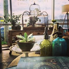 When my boutique's flooded with sun it feels like a greenhouse. Dreaming of sunny days soon #greenhouse #sunshine #myshop #birdcage #green #blue #sunny #dreaming #nature #TheNaturalEclectic #books #bottles #blue #decor #design #display #curated #HeatherRoss by naturaleclectic