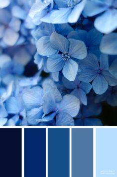 shades-of-blue-color-inspiration-wedding-color-ideas-branding-color-palette-branding-color-ideas-wedding-color-palette-home-interior-design/ SULTANGAZI SEARCH Pantone Colour Palettes, Pantone Color, Blue Colour Palette, Colour Schemes, Blue Shades Colors, Colours, Color Blue, Paint Colors For Home, House Colors