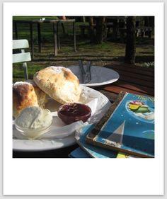 Lavandula Swiss Italian Farm : Guest Post by Jo from Little Melbourne Sunny Sunday, Daylesford, Lavandula, Melbourne, Holiday Ideas, Ethnic Recipes, Wedding Ideas, Culture, Flat