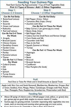 Guinea pig food chart