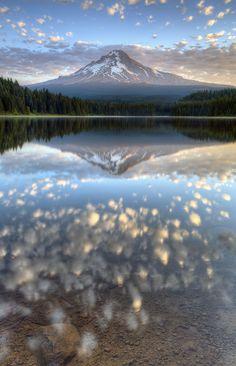 morning reflections Oregon - USA: Rich Bitonti