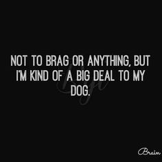 That doesn't begin to express our bond with our dogs. ♥