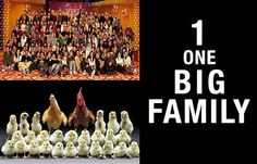 We are all 1 Biig Family!  Samsara entails Kinship with All Beings. :-) http://What-Buddha-Said.net/drops/III/One_BIG_Family.htm