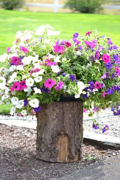 These planters turn an old tree stump into a planter garden. Try doing this as well instead of dealing with the hassle of a tree stump removal. Tree Stump Planter, Log Planter, Tree Planters, Potted Trees, Outdoor Planters, Diy Planters, Garden Planters, Outdoor Gardens, Hanging Planters