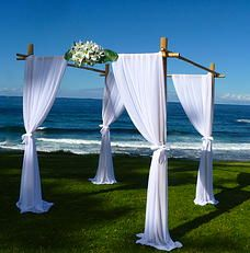 Arbour with flowers?!? Wedding Knights, Ceremony Decoration Hire, Sydney   Gallery