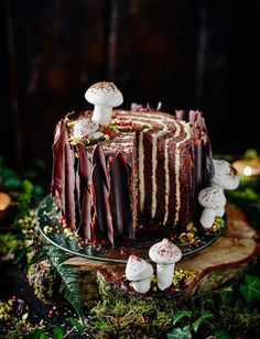 This cake is essentially a gigantic Swiss roll. Add chocolate bark and meringue mushrooms to complete the brilliant effect. This cake is essentially a gigantic Swiss roll. Add chocolate bark and meringue mushrooms to complete the brilliant effect. Chocolate Yule Log Recipe, Chocolate Log, Chocolate Swiss Roll, Christmas Chocolate, Chocolate Chips, Chocolate Recipes, Christmas Desserts, Christmas Baking, Christmas Log Cake