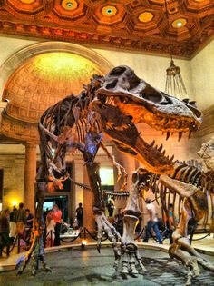 Natural History Museum of Los Angeles County in Los Angeles, CA