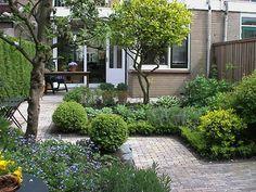 Small garden design by Nalbach Groenadvies