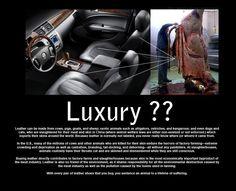luxury??