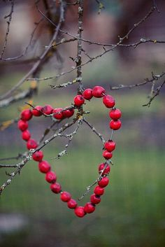 Cranberry Heart for Birds on Valentines day Fall Crafts, Christmas Crafts, Crafts For Kids, Xmas, Christmas Images, I Love Heart, Autumn Inspiration, Yule, Bird Houses