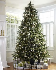 BH Fraser Fir Flip Tree