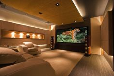 Elegant home cinema