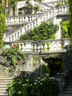 Close to our hotel on Lake Como is the famous Villa Carlotta. Built in 1690 by the Clerici family, this beautiful old Villa is home to a b. Italian Garden, Italian Villa, Lake Como Italy, Lake Como Wedding, Italian Lakes, Purple Home, Stairway To Heaven, Northern Italy, Walking Tour