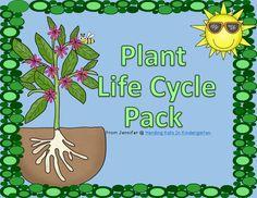 Herding Kats in Kindergarten: Plant Life Cycle Unit