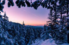 Winter wonderland! [OC][2560x1707]