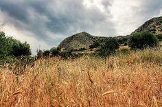 Parco Nazionale del Gargano falesia Olimpo Puglia, Italy