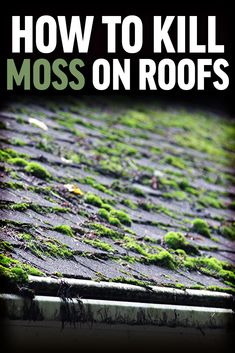 Learn how to kill roof moss and prevent its return before it ruins your home's shingles, threatens its structural integrity, or affects your family's health. Roof Cleaning, Household Cleaning Tips, House Cleaning Tips, Cleaning Hacks, Gutter Cleaning, Cleaning Services, Moss Removal, Ideas Para Organizar, Diy Home Repair