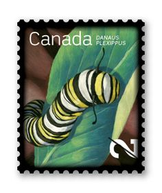 Canada caterpillar postage stamp