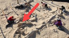 These Construction Workers Hit Something Hard While Digging What They Found Was Amazing