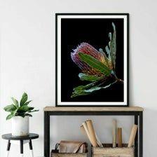 Downloadable Australian Banksia Flower Print Printable | Etsy Professional Photo Lab, Botanical Wall Art, Walmart Photos, Floral Photography, Photo Colour, Flower Prints, Printables, Artwork, Flowers
