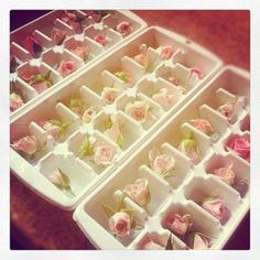 Rose ice cubes for your bridal picnic shower would have to be the food grade flowers Flower Ice Cubes, Ice Bowl, Tea Party Bridal Shower, Bridal Shower Foods, Rose Tea, High Tea, Afternoon Tea, Wedding Styles, Wedding Ideas