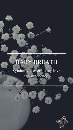 Flower Symbol, Everlasting Love, Daffodils, Breathe, Symbols, Flowers, Baby, Poster, Baby Humor