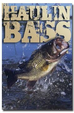funny+fly+fishing+quotes | FI-1 Haulin Bass