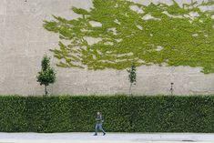 Green is a creation by the artist Predrag Mijailovic. Street Photo, Appreciation, Green, Artist, Artwork, Image, Work Of Art, Auguste Rodin Artwork, Artists