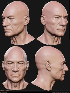 Charles Xavier - Professor X by Ensar Yanar Human Figure Drawing, Figure Drawing Reference, Anatomy Reference, Art Reference Poses, Facial Anatomy, Head Anatomy, Anatomy Art, Anatomy Sculpture, Sculpture Head