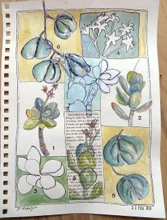 from my sketchbook by janelafazio, via Flickr--I love how Jane divided the page, using different background colors, to highlight all the little samples of nature!