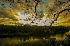 Sunset over an untouched Amazon rainforest-Peru - Global ...