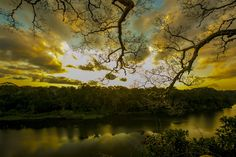 Sunset over an untouched Amazon rainforest-Peru - Global ...