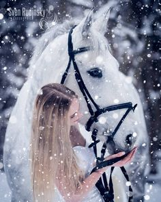 To cool down a photo from January 2017 with . To cool down a photo from January 2017 with @ , , , , Horses In Snow, Cute Horses, Pretty Horses, Horse Girl Photography, Equine Photography, Winter Photography, Animals And Pets, Cute Animals, Winter Horse