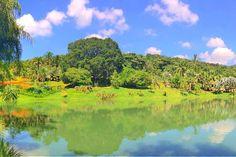 Destino: Instituto Inhotim – Minas Gerais #EmbarqueNaVIagem #VisitBrasil #ViajepeloBrasil