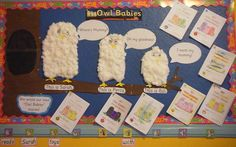 Owl Babies is such a lovely book and lends itself very well to displays. Here is a delightful classroom display that uses Owl Babies as a starting point for literacy. It is a wonderful story that… Literacy Display, Early Literacy, Kindergarten Activities, Infant Activities, Book Activities, Preschool Ideas, Owl Theme Classroom, Infant Classroom, Classroom Ideas