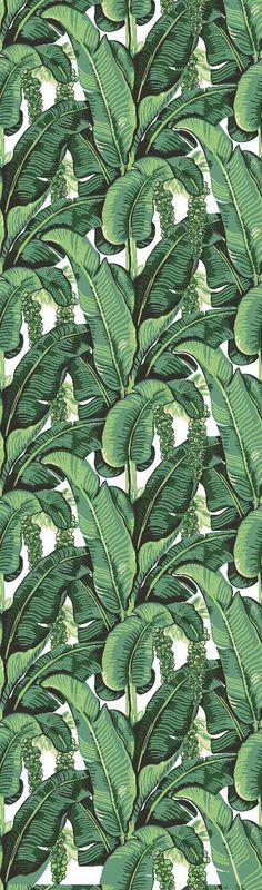 Banane Blatt abnehmbare Wallpaper  Schale & Stick selbst