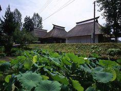 Takayanagi Community Center | kengo kuma and associates