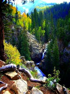 Judd falls,National forest,Corolado.