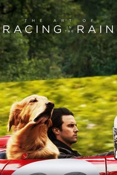 The Art of Racing in the Rain A dog named Enzo (voiced by Kevin Costner) shows us the life lessons he learned from his race car driving master (Milo Ventimiglia). Movies 2019, Sci Fi Movies, Marvel Movies, Hd Movies, Movies To Watch, Movies Online, Milo Ventimiglia, Kevin Costner, Amanda Seyfried