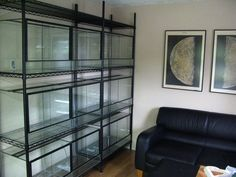 (integrated into the wall/false wall.just gorgeous) Reptile House, Reptile Habitat, Reptile Room, Reptile Cage, Gecko Habitat, Les Reptiles, Cute Reptiles, Reptiles And Amphibians, Snake Terrarium