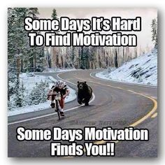 All We need to succeed in our life is Motivation. So, We are back with a massive collection of Inspirational Memes. There is 91 Motivational memes on this list Stupid Funny, The Funny, Funny Jokes, Funniest Memes, Funny Humour, Funny Cartoons, Pranks Hilarious, Clean Funny Memes, Scary Funny