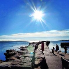 Apparently today is the most depressing day of the year! Cheer yourself up with the face that #summer is on it's way! (Photo by Kim Bennett) #standrews #visitstandrews #brilliantmoments #visitscotland #pier #scotland #sunshine