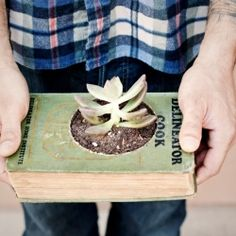 potted book
