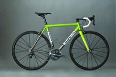 baum corretto, green, white, bronze