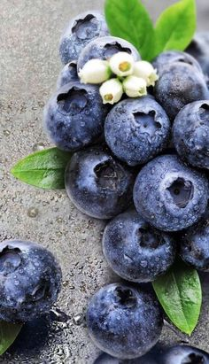 Super Fruit And Vegetables Photography Nature Ideas Vegetables Photography, Fruit Photography, Fruit Flowers, Fruit Trees, Fresh Fruits And Vegetables, Fruit And Veg, Acerola, Fruits Photos, Fruit Picture