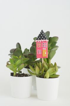 Mini House Housewarm