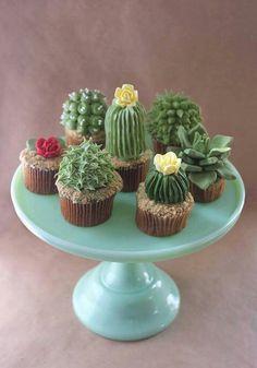 succulents & cupcakes? Hells ya!