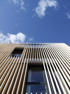 Striped Living | group8; Photo © Régis Golay, FEDERAL studio, Geneva | Archinect
