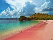 Pantai Pasirnya Pink, Itulah Pantai Pink di Ujung Lombok