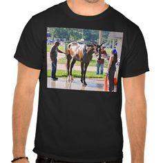 Saratoga 150 Ready T Shirt, Hoodie Sweatshirt